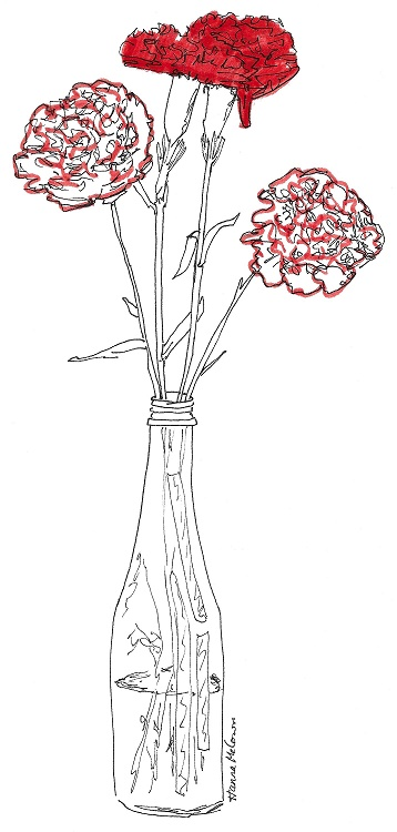 Carnations small